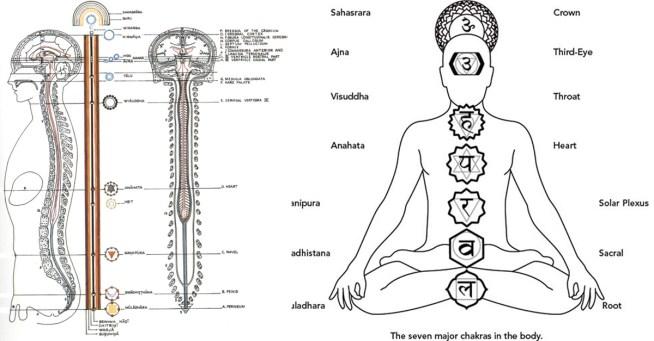 Примерное расположение чакр в теле человека