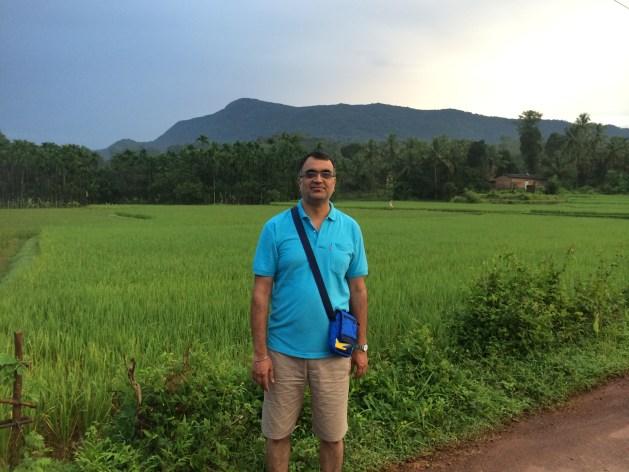 morning walks  lush green paddy fields every day