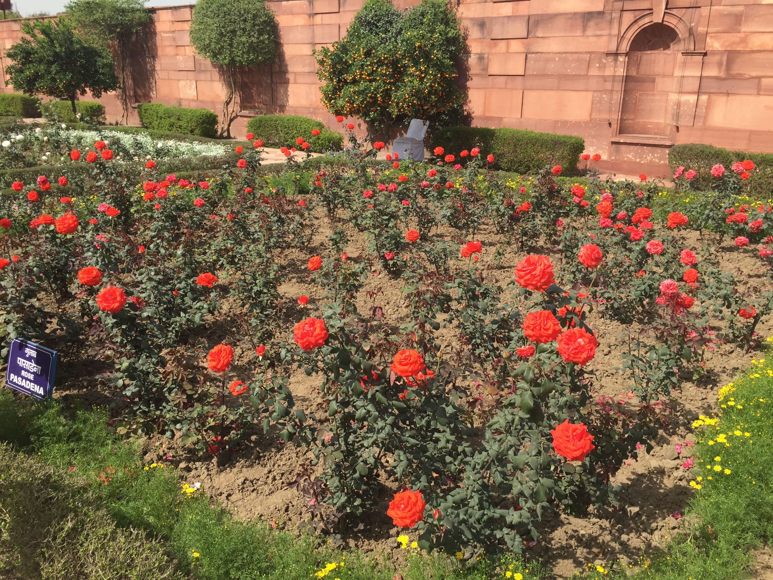 Delhi Mughal Gardens details – A Few Good Things