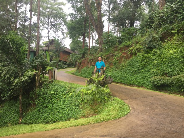 plantation trek