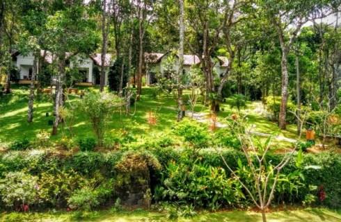 Independent-Cottages-at-Niraamaya-Ca
