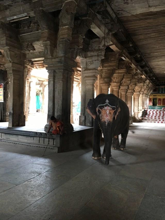 Devi Shrine of Akhilandeshwari