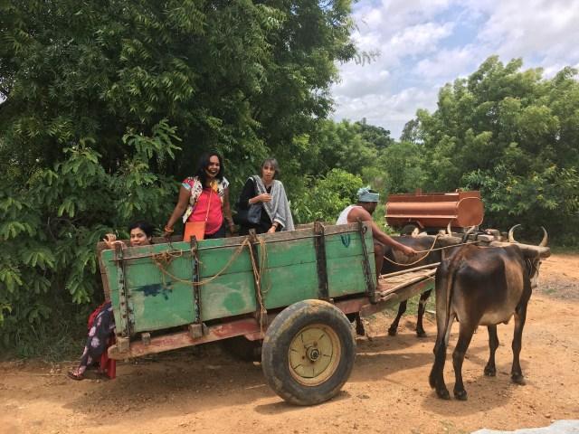 Baevu Villagewith neem trees