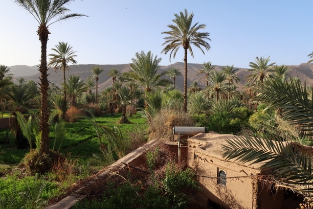 Bab el Oued, Tamnougalt, Draa vallei