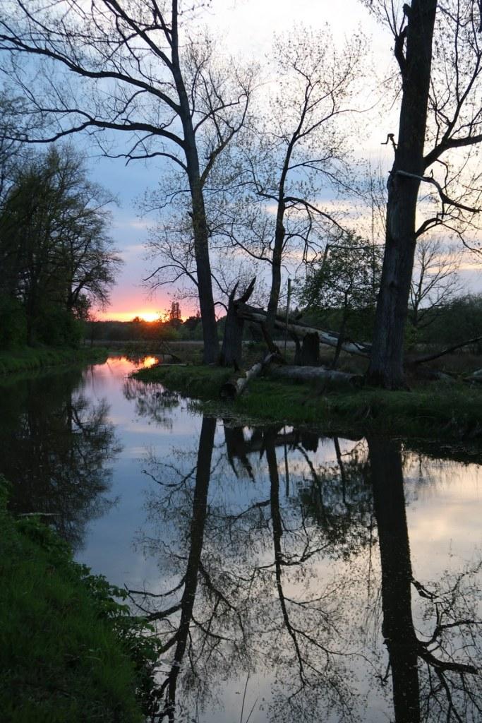 vakantaseren, Vosseven, Limburg