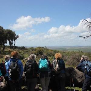 Spanje | Single wandelreis in Andalusië - Costa de la Luz