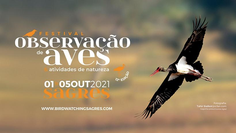 Sagres Birdwatching Festival 2021