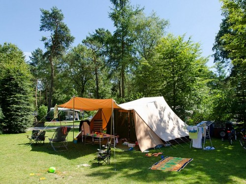 Camping De Hertshoorn kampeerplaats