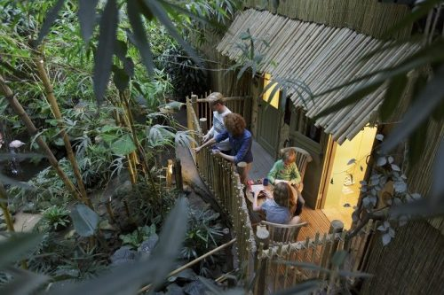 Comfort cottage op Center Parcs Het Heijderbos