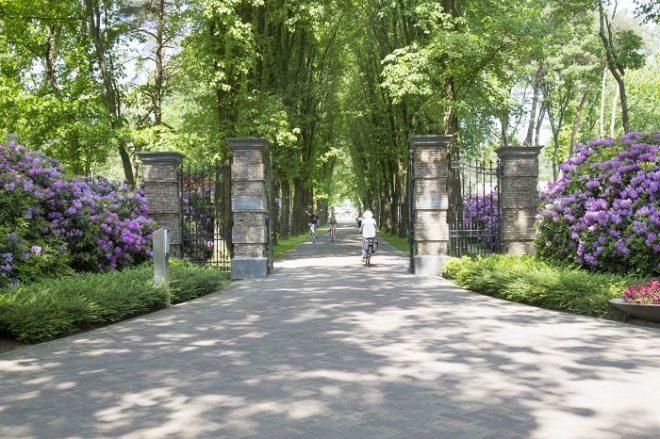 TopParken Landgoed de Scheleberg mainroad