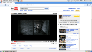 Google Chorme Plays YouTube in Ubuntu 9.04