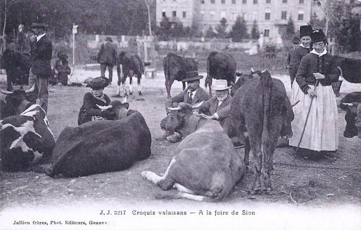 1900 : La Planta à plein régime !