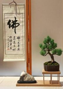 TREE:STONE