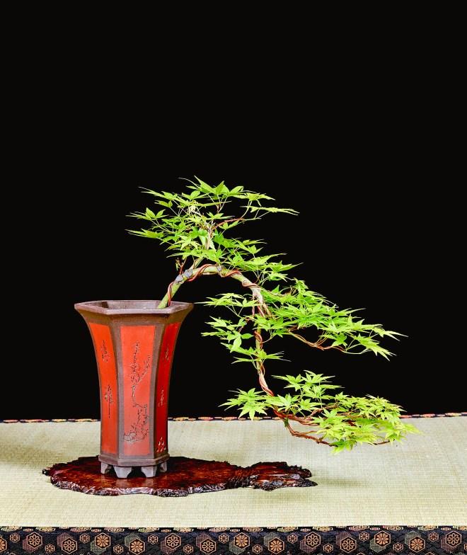 TREE 37-4857