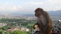 Beim Swayambhutempel, Kathamndutal
