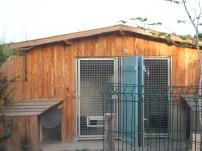 Vue sur une des maisons de nos chiens