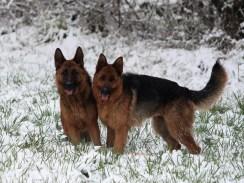Avec sa copine Leska (à gauche)