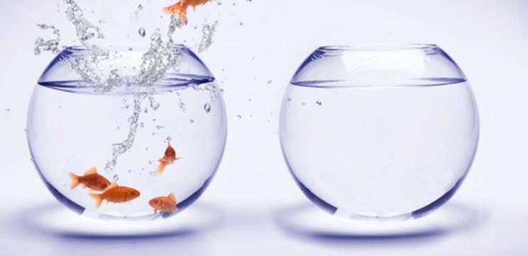 Como mudar a sua vida em 7 dias