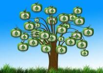 A fórmula da árvore do dinheiro, por Robert Allen.
