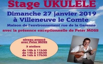 Villeneuve le Comte ► Stage de Ukulélé