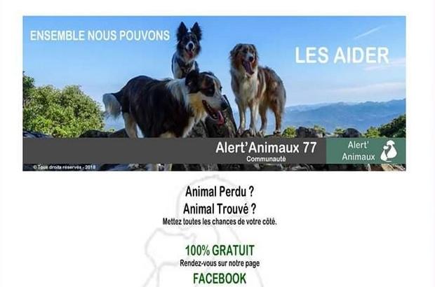 Seine et Marne ►  Alert'Animaux 77, la page Facebook des animaux perdus