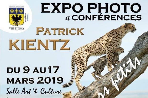 Esbly ►Expo photo Patrick Kientz – Les animaux et leurs petits