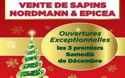Vente de sapins à l'ESAT La Grange au Bois à Lagny sur Marne dès le 2 décembre