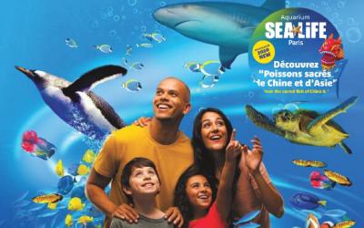 Sea Life ouverture d'un espace consacré aux « Poissons Sacrés de Chine et d'Asie ».