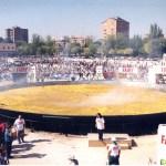 ¿Sabías que el récord de la paella más grande del mundo lo ostenta Madrid?