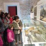 III Jornadas Etnológicas GRATUITAS del Museo de Paleontología de Alpuente