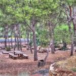 Merenderos y áreas recreativas de la Comunidad Valenciana