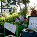 El barrio de Benimaclet acoge este sábado 16 de abril un mercadillo ecológico