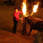 El bou embolat y el bou en corda quedan prohibidos desde hoy en Valencia