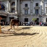TastArròs, la fiesta del arroz valenciano, vuelve a la plaza del ayuntamiento de Valencia el 15 de abril