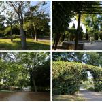 Un gran jardín en Valencia desconocido por muchos: el Jardín de Polífilo