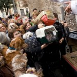 La calle Sagunto de Valencia celebra la tradicional fiesta de San Antonio Abad