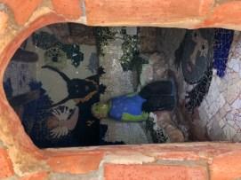peters Garten Bild 8