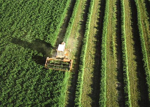 el-ministerio-de-agricultura-alimentacion-y-medio-ambiente-convoca-las-ayudas-al-fomento-de-la-integracion-cooperativa