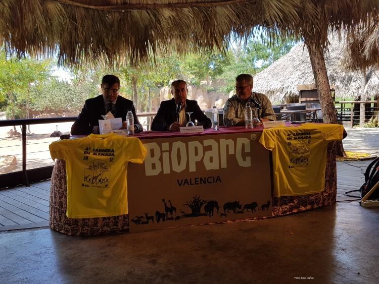 BIOPARC Valencia presenta la 4ª Carrera en Manada (42)