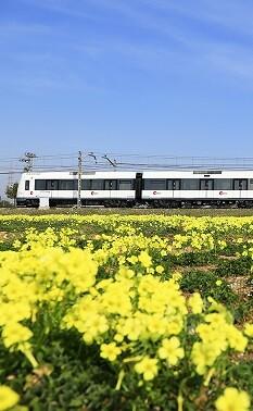 Un tren de Metrovalencia.