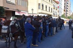bendición de la fiesta de san Antonio Abad en València 20200117_094858 (89)