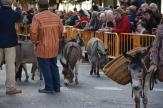 bendición de la fiesta de san Antonio Abad en València 20200117_094858 (94)