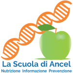 logo-ancel-sidebar