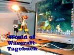 WoW-Diary, Teil 76: Autsch….
