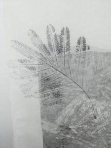 valentina-semprini-monoprint (45)