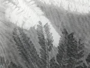 valentina-semprini-monoprint (6)