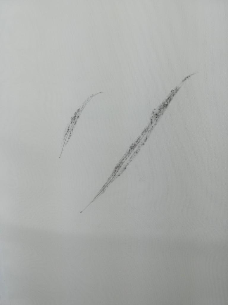 valentina-semprini-monoprint (67)