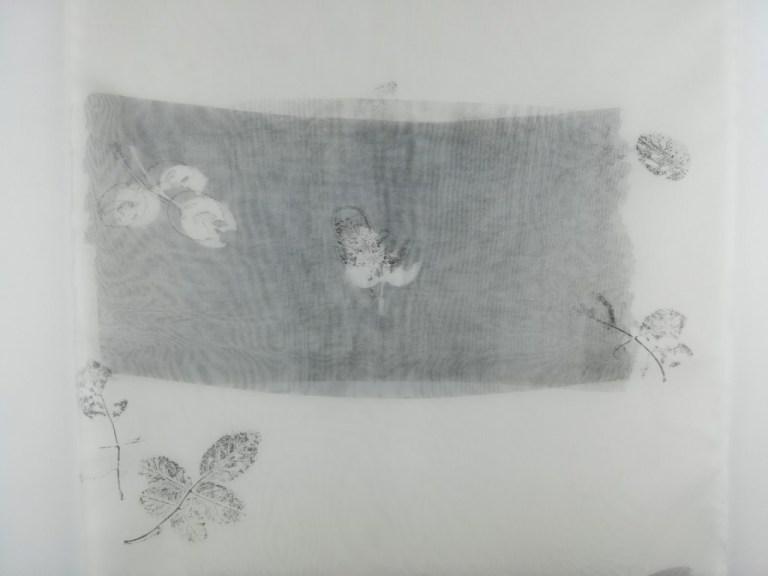 valentina-semprini-monoprint (73)