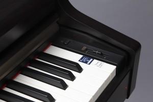 CN24 Keys