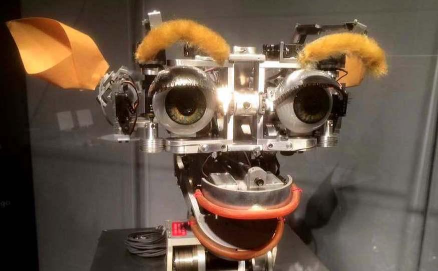 valeria cagnina robot mit boston